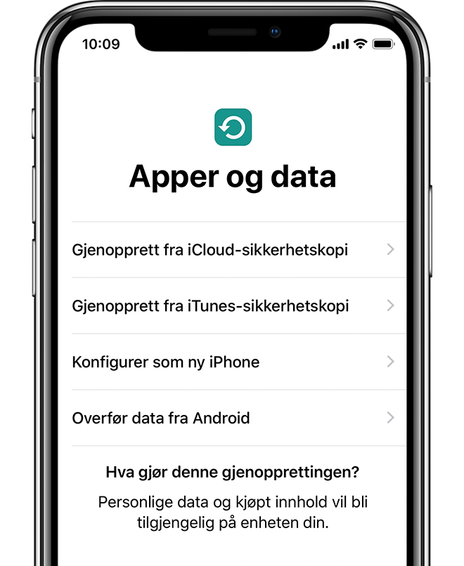 Apper og data-alternativ på iPhone X.
