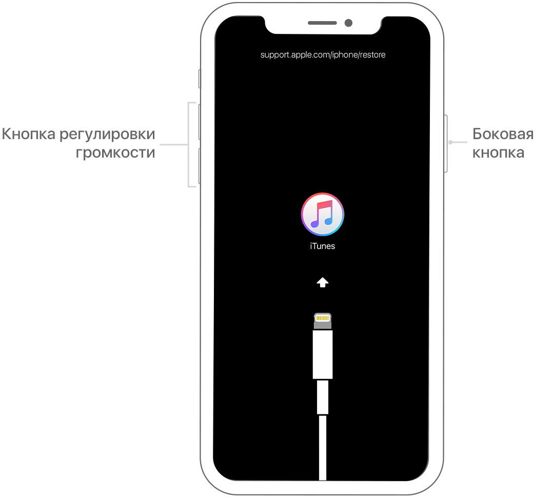 Забыт пароль iPhone, iPad или iPod touch либо устройство отключено - Служба поддержки Apple