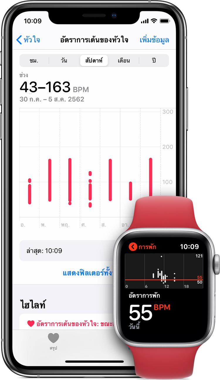 การวัดอัตราการเต้นของหัวใจในแอพสุขภาพบน iPhone และอัตราการเต้นของหัวใจขณะพักในแอพบน Apple Watch