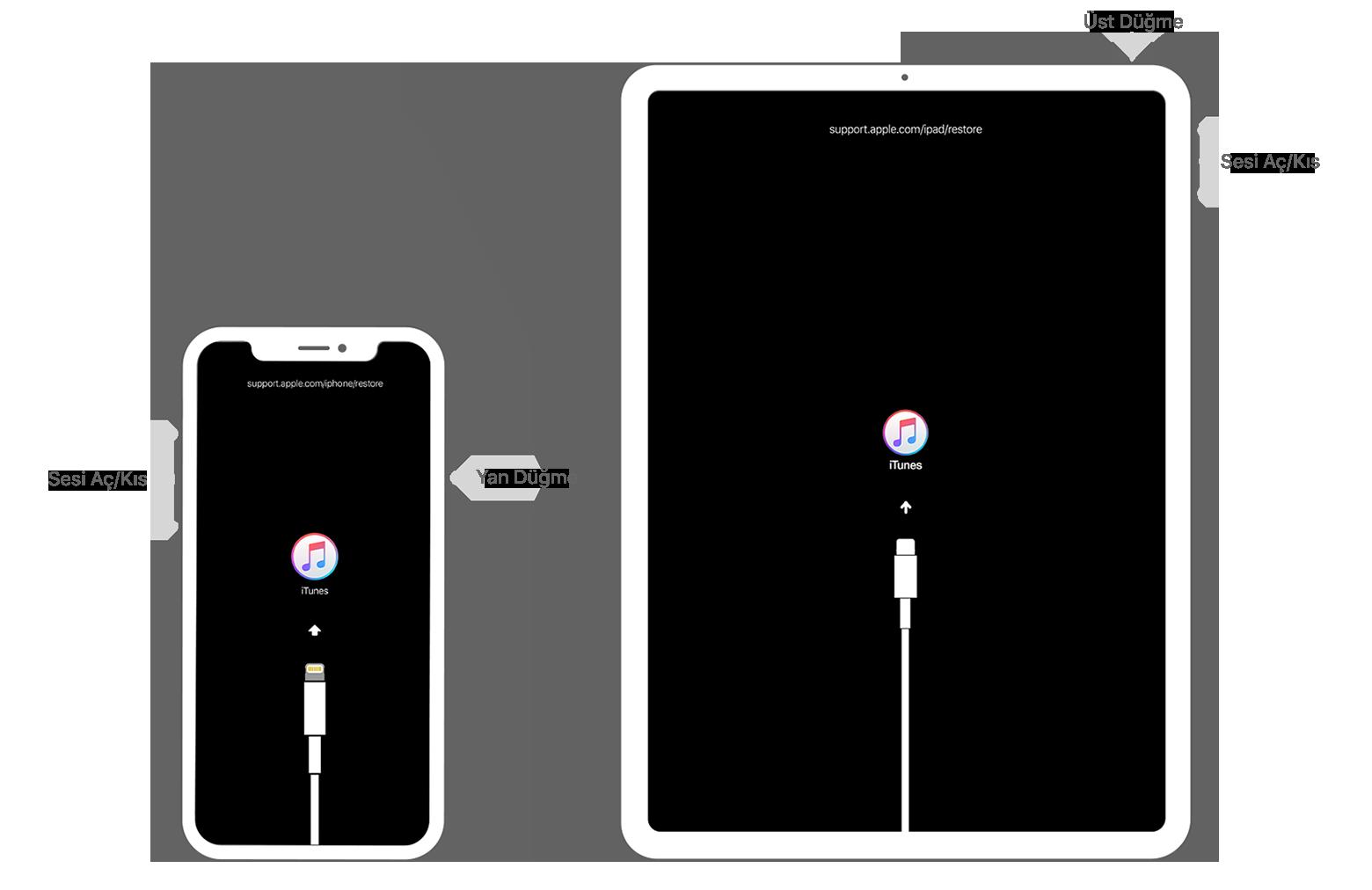 iPhone, iPad veya iPod touch'ınızın parolasını unuttuysanız veya