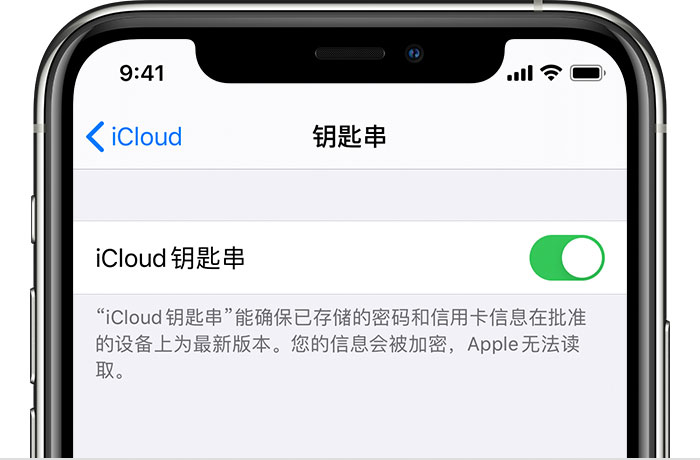 在 iPhone 上开启 iCloud 钥匙串之后会储存哪些信息?
