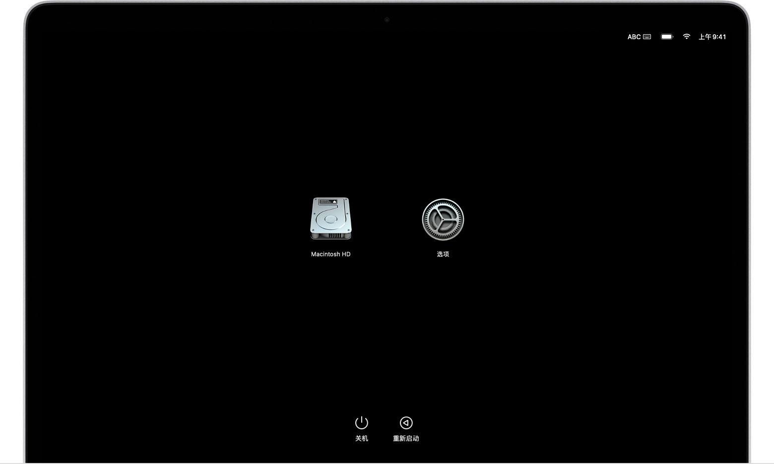 "macOS 启动选项屏幕上显示了""Macintosh HD""和""选项""图标"
